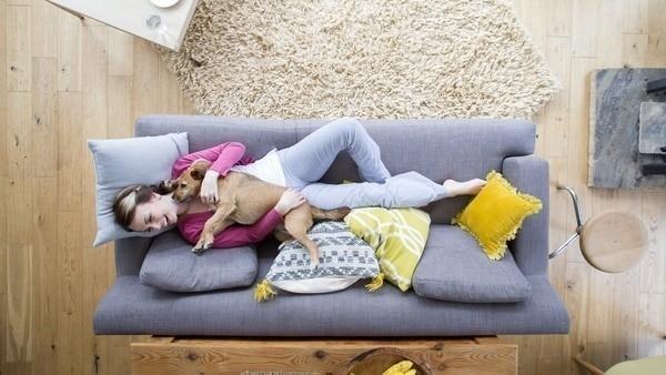 Un gran número de jóvenes prefiere tener una mascota antes de empezar una familia