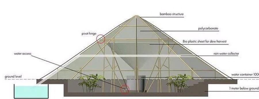 invernadero que hace crecer plantas en el desierto- gráfico