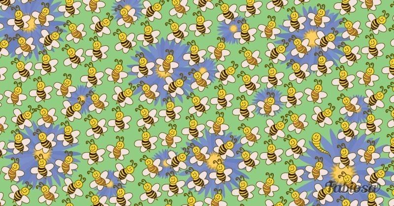 Desafío visual abejas