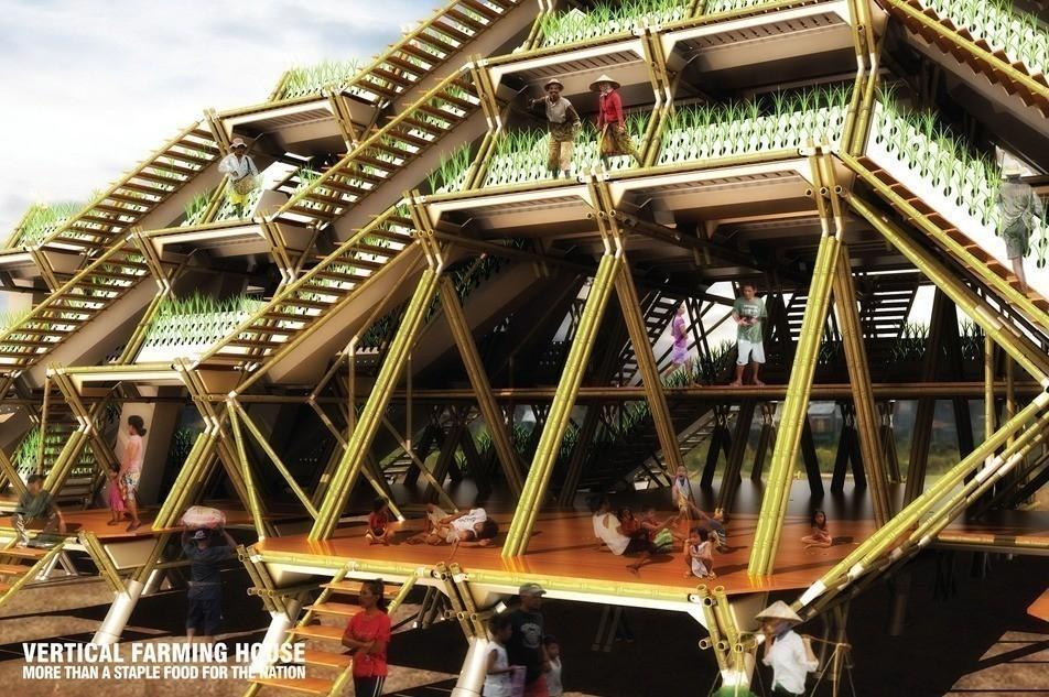 Huertos verticales de bambú producirían alimento para 3 mil millones de personas
