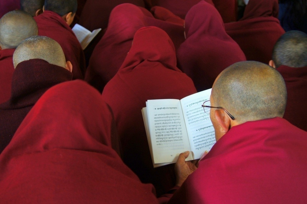 Dalai Lama: ladrones de energía