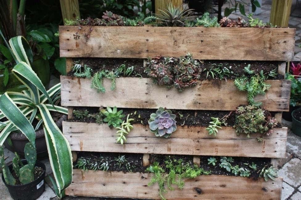 Ideas para crear divisiones verdes en tu jardín -jardín vertical terraza