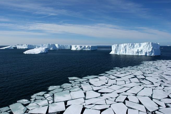 La comisión se reunió para evaluar los proyectos de conservación de la Antártida