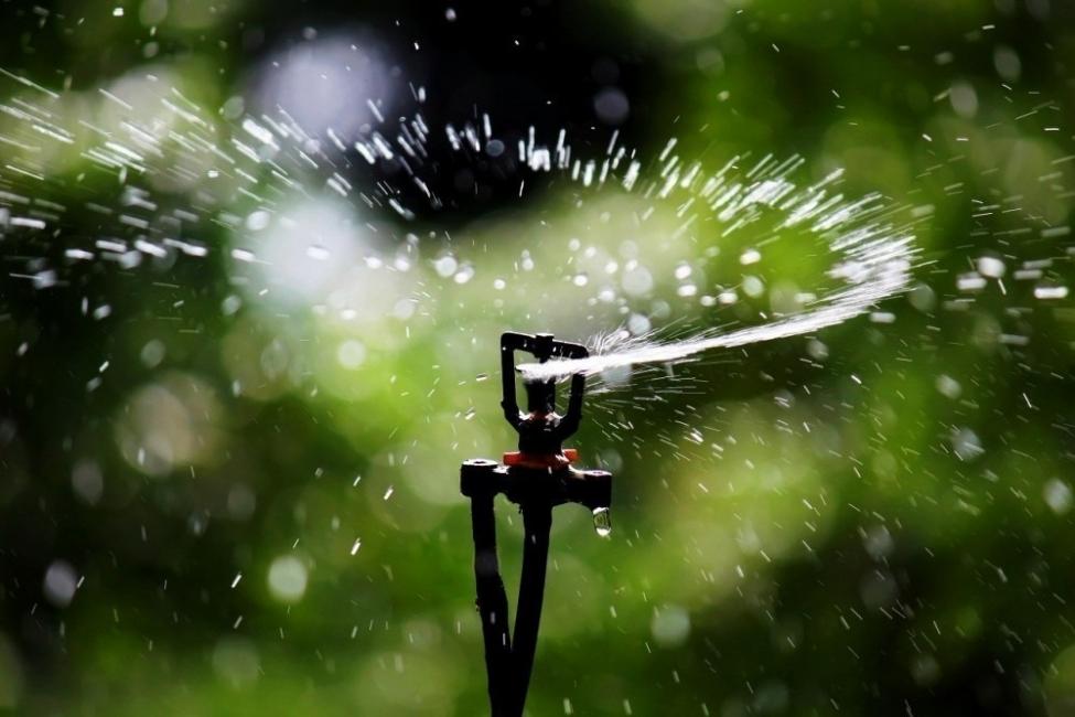 Mantener húmedas tus plantas durante las vacaciones - aspersor