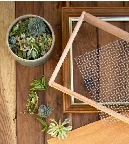 un-pequeno-jardin-vertical-de-interior-02