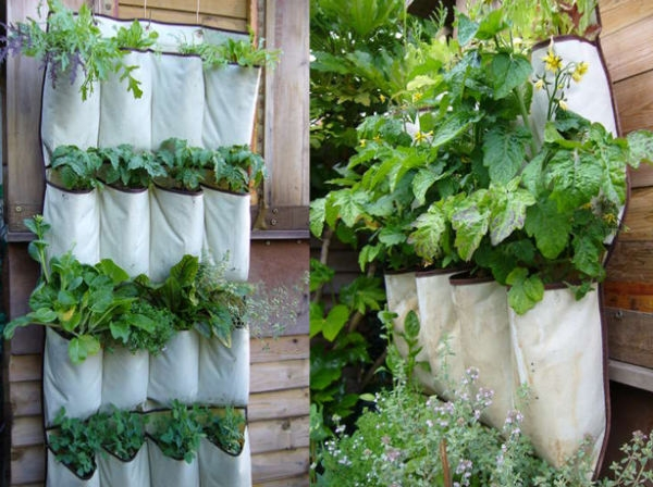 shoe-pockets-diy-vertical-garden