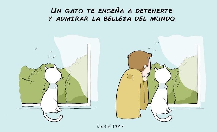 gato - pareja - depresión