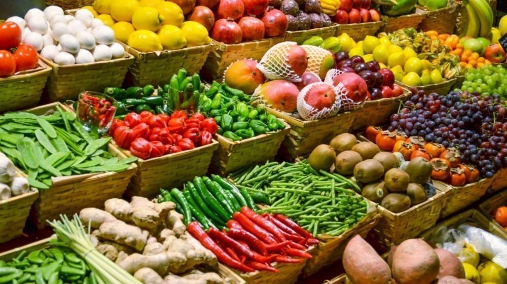 guardar frutas y verduras