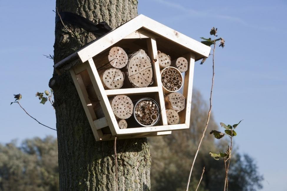 hotel para abejas- buzón de correo