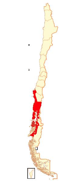 Localización de la Ranita de Darwin