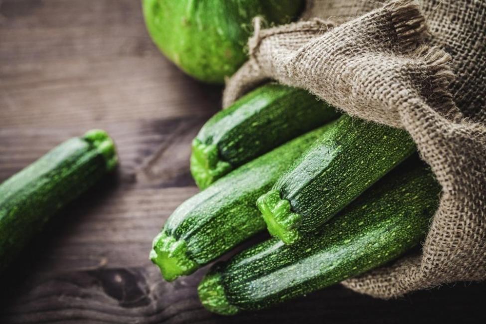 cultivar zucchini
