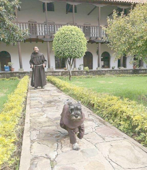 La historia del perro monje que sorprende al mundo entero