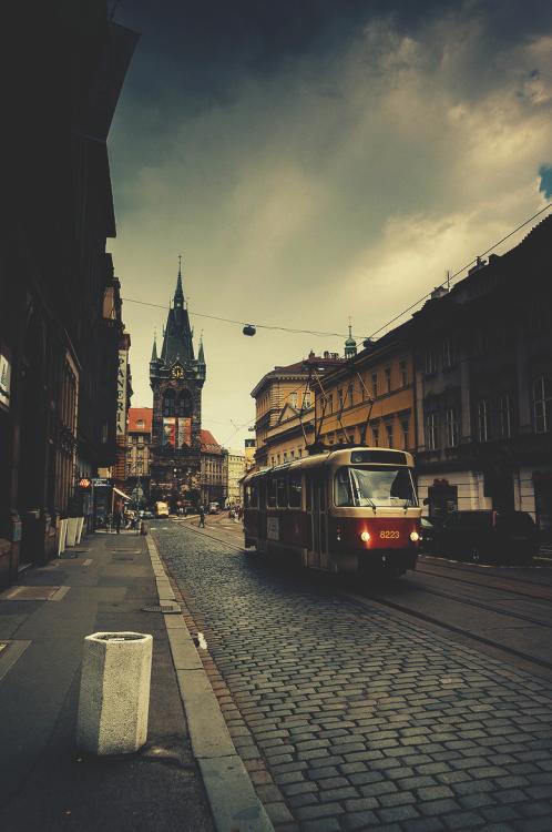 comenzar de nuevo viajando bus en república checa