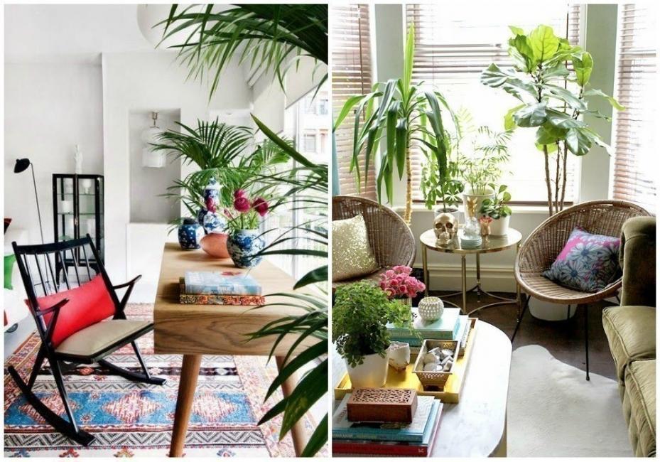 Cómo decorar con estilo tropical- sala living