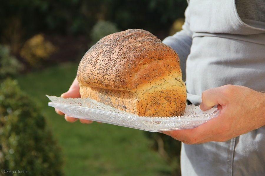 queso vegano con pan