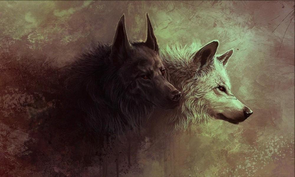 Parabola de los lobos 2