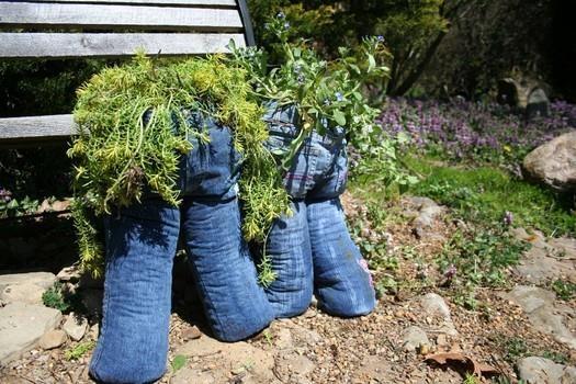 jeans macetas