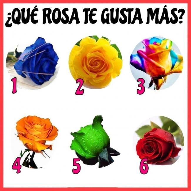 rosas y personalidad