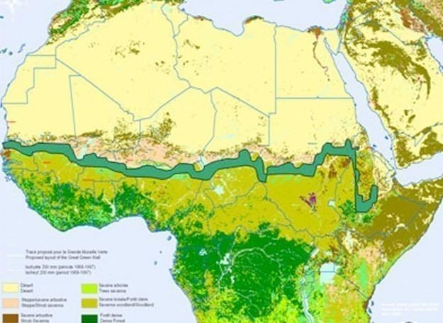 La Gran Muralla Verde tendrá más de 7.000 kilómetros de longitud