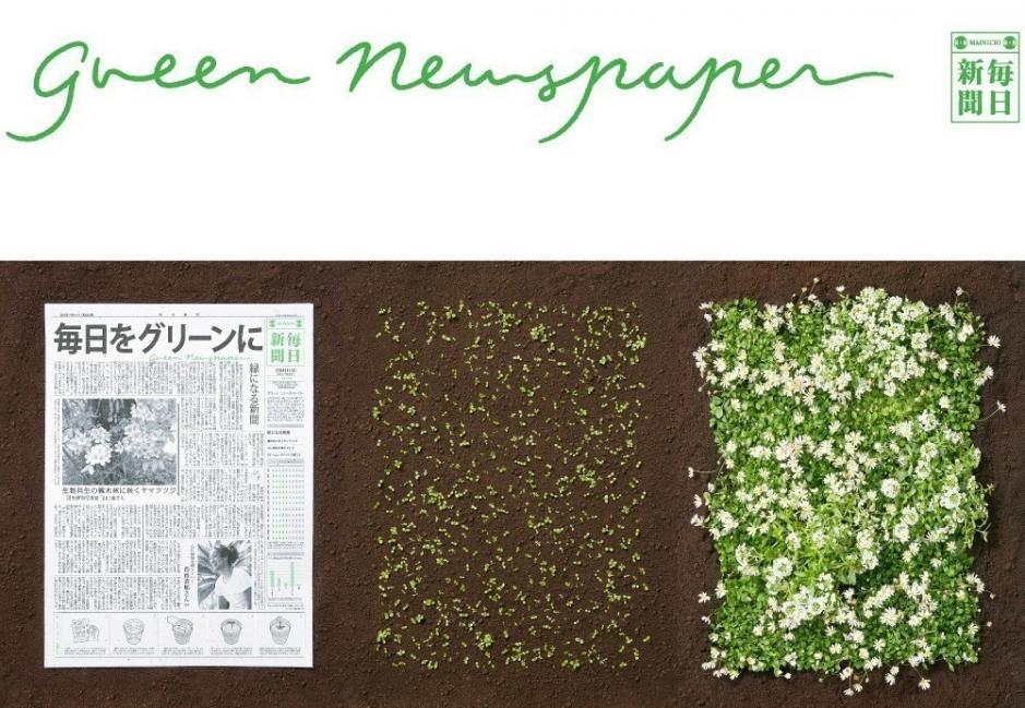 Un nuevo periódico que después de ser leído se convierte en plantas