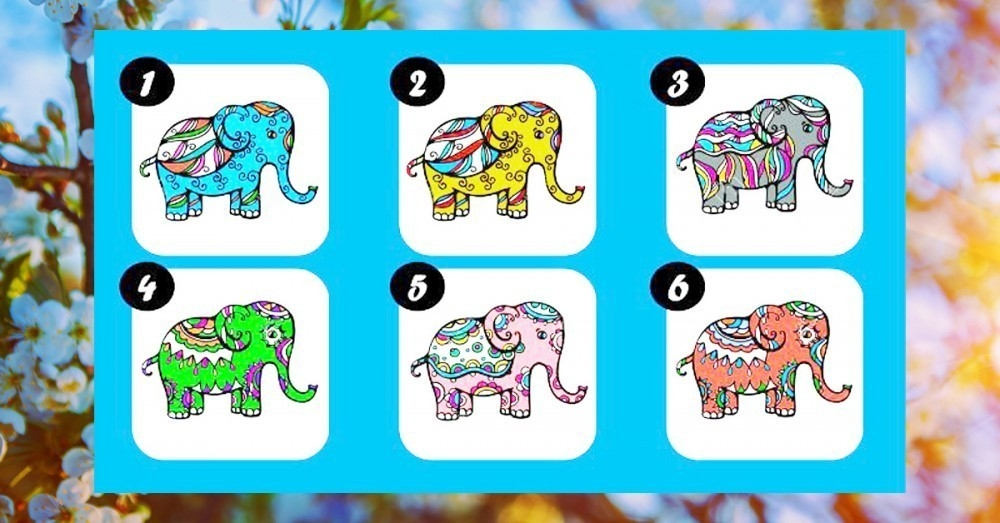 Test Elige Tu Elefante De La Fortuna Favorito