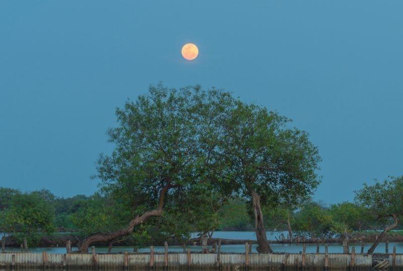 Así se vio la última Superluna del 2017 desde Indonesia