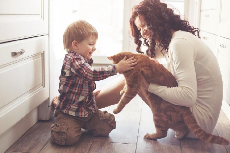 beneficios de tener un gato para la salud - niños autistas