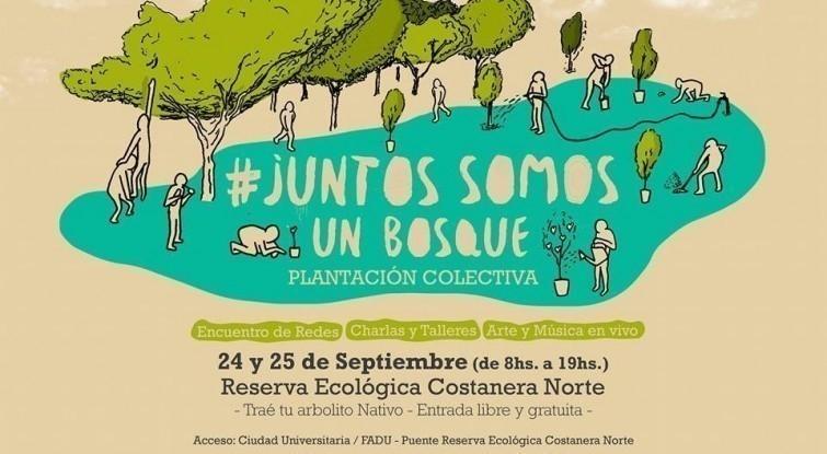 flyer festival juntos somos un bosque