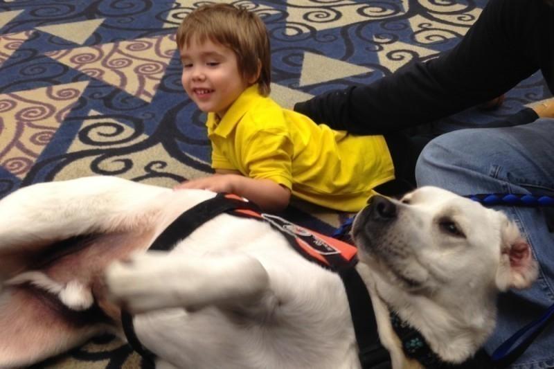 Este niño autista y su perro sí que saben cómo comunicarse