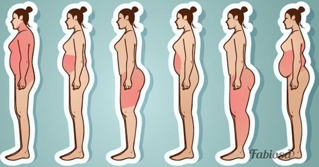 Dónde se acumula la grasa corporal