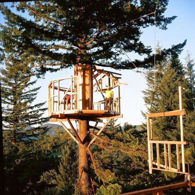 casa del árbol- The Cinder Cone- montaje