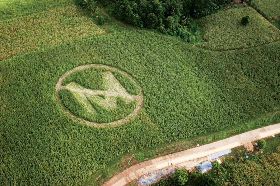 Juicio a Monsanto - fuera Monsanto