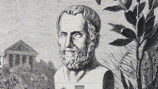 Teofrasto, comparó al silfio con otra hierba, la Magydaris pastinacea,