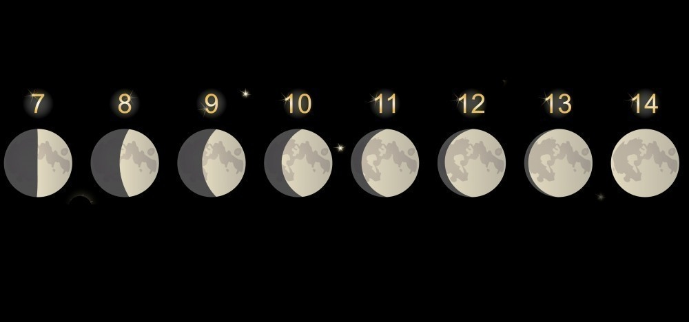 influencia luna en emociones- neurociencia- serotonina