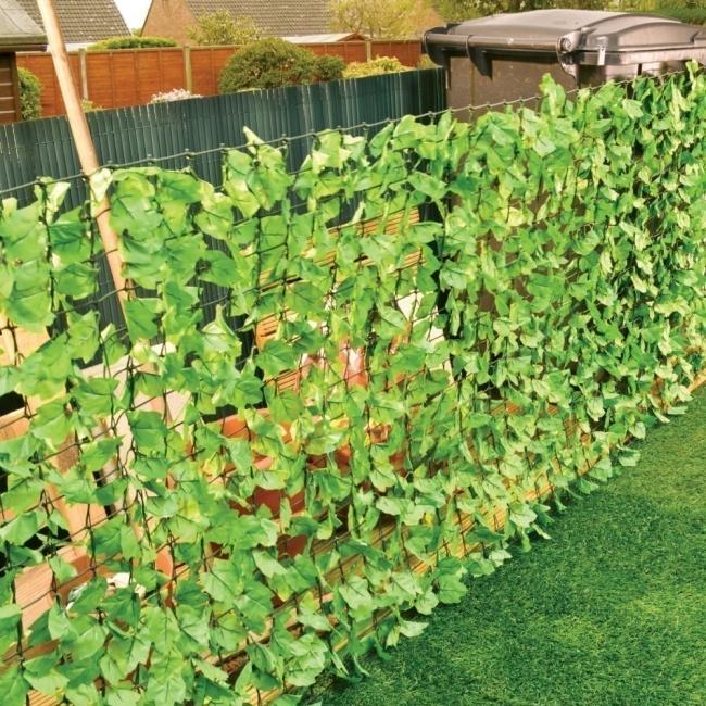 Ideas para crear divisiones verdes en tu jardín - enredaderas