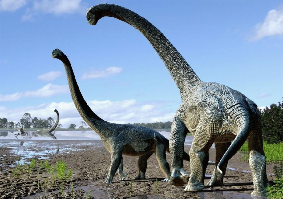 Los dinosaurios se extinguieron hace  66 millones de años