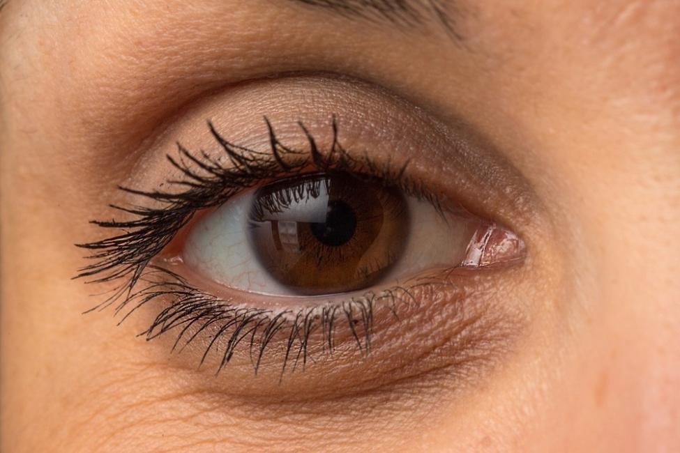 Eliminar bolsas en los ojos - ojos