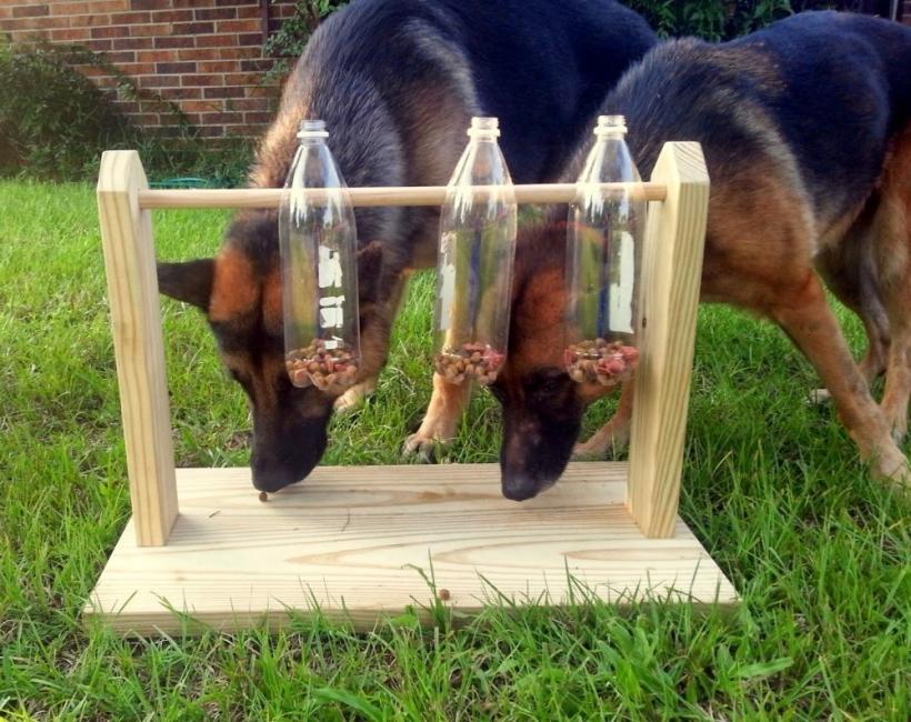 Comedero juguete para perros - perros comiendo