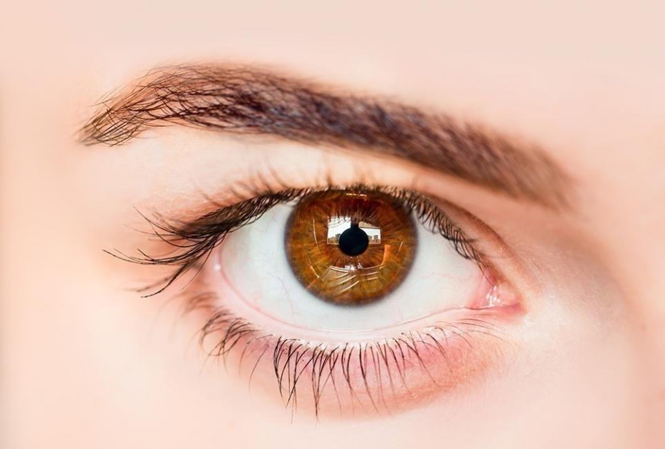 Qué dice el color de tus ojos sobre tí - café claro