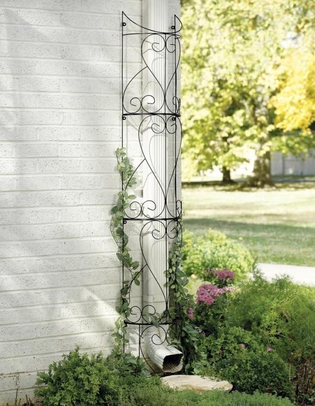 columnas verdes- trucos de jardinería