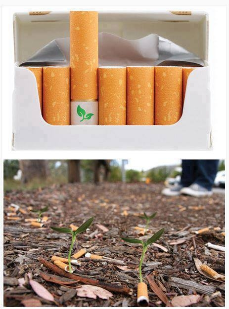 cigarrillos biodegradables