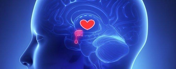 efectos oxitocina