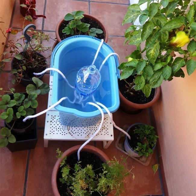 Mantener húmedas tus plantas durante las vacaciones - método del cordón