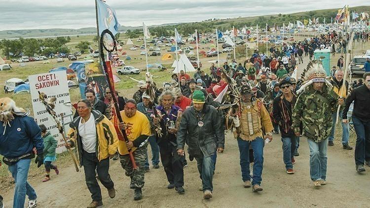 bufalos aparecen en manifestacion sioux