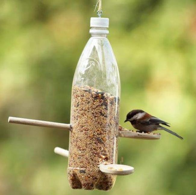 comedero para aves