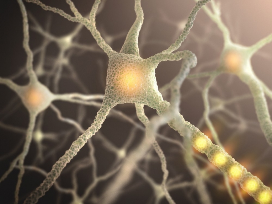 cosas extrañas que tu cuerpo hace mientras duermes- neuronas