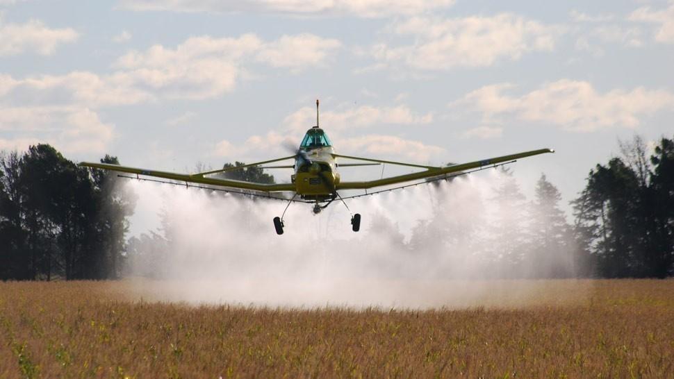 Un pesticida contra el zika mató a tres millones de abejas