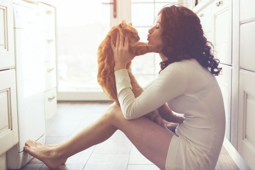 beneficios de tener un gato para la salud  - depresión