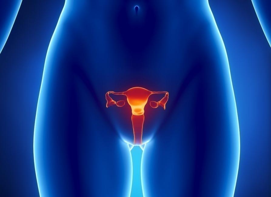 dolor ovario izquierdo y flujo marron