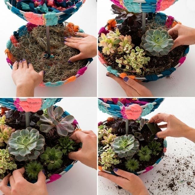 hacer un pequeño y colorido jardín para tener dentro de tu hogar- plantar suculentas
